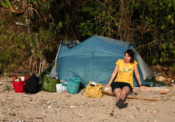 planton island - Whitsundays